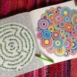 Eis a nova moda: Livros de Colorir para Adultos!