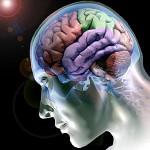 """A consulta de """"rotunda""""…e o cérebro da cabeça!… – Aida Fernandes"""