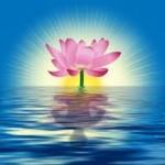 Dominar a mente, cuidar do corpo, alimentar a alma! (3) – Patrícia Marques