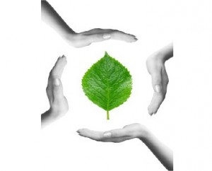 perspetiva_ambiental5
