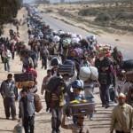 Refugiados ou Emigrantes?